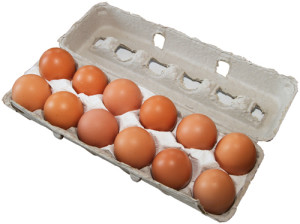 organic_eggs_egg_carton2